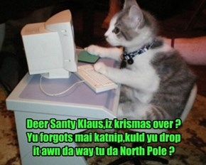 Deer Santy Klaus,iz krismas over ? Yu forgots mai katnip,kuld yu drop it awn da way tu da North Pole ?