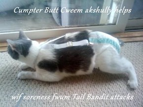 Cumpter Butt Cweem akshully helps  wif soreness fwum Tail Bandit attacks
