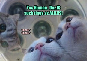 Yes Human.  Der IS such tings as ALIENS!