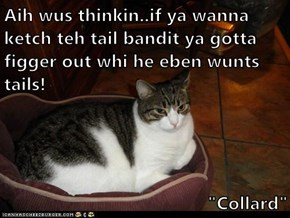 "Aih wus thinkin..if ya wanna ketch teh tail bandit ya gotta figger out whi he eben wunts tails!  ""Collard"""