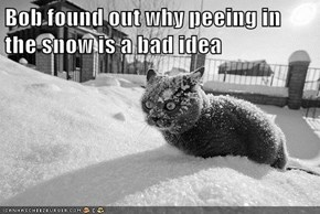 Bob found out why peeing in the snow is a bad idea
