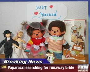 Breaking News - Paparazzi searching for runaway bride