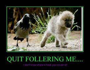 QUIT FOLLERING ME....