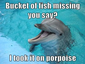 Flipper is So Hilarious...