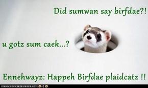 Did sumwan say birfdae?! u gotz sum caek...? Ennehwayz: Happeh Birfdae plaidcatz !!