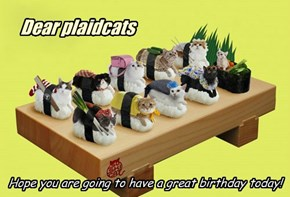 Happy Birthday plaidcats!