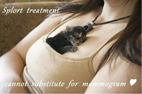 Splort  treatment   cannot  substitute  for  mammogram ♥