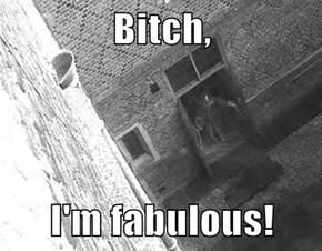 b*tch,  I'm fabulous!
