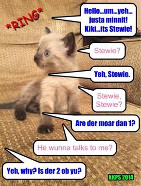 Stewie shock. Wat must he wunts?!