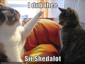 I dub thee  Sir Shedalot