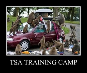 TSA TRAINING CAMP