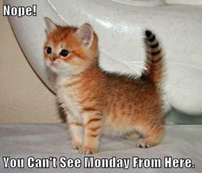 Nope!  You Can't See Monday From Here.