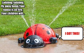 Ladybug, ladybug,  fly away home.Your house is on fire; Your children will...