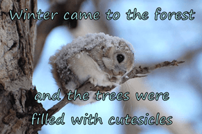 Winter came to the forest  and the trees were        filled with cutesicles