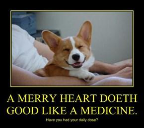 A MERRY HEART DOETH GOOD LIKE A MEDICINE.