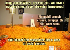 psom,  psom!  Where   are  you?  911,  we  have  a possible  cheezy  poof   drowning  in progress!