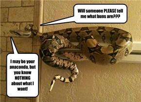 PSA: Anacondas Don't Want Your Buns Hun