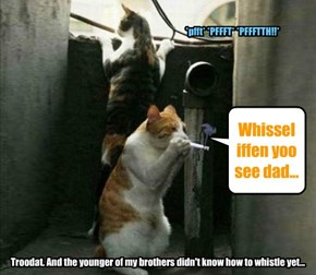Whissel iffen yoo see dad...