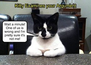 Kitty Examines your Argument