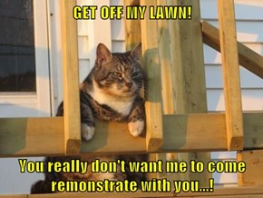 GET OFF MY LAWN!  You really don't want me to come remonstrate with you...!