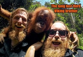 The long lost third Viking brother