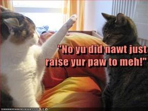 """No yu did nawt just                                                                                                                                                 raise yur paw to meh!"""