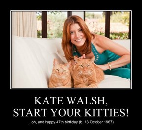 KATE WALSH, START YOUR KITTIES!