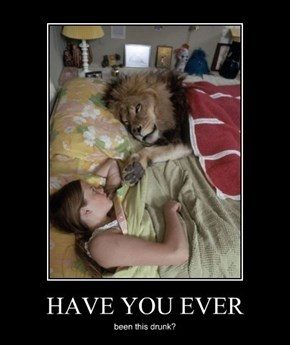You Weren't Lion, About That One Night Stand...