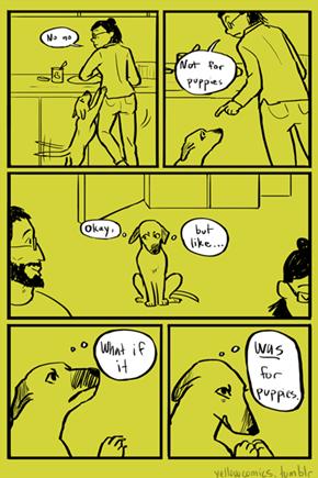 Impeccable Logic, Dog