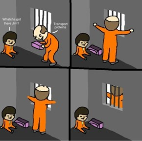 Gotta Get Through These Cell Walls