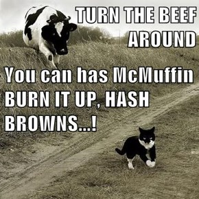 TURN THE BEEF AROUND You can has McMuffin BURN IT UP, HASH BROWNS...!
