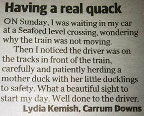 yay to Melbourne train drivers (the first time I have ever said those words!)