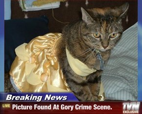 Breaking News - Picture Found At Gory Crime Scene.
