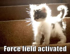 Force field activated