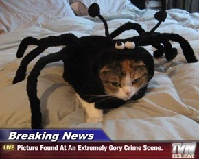 Breaking News - Picture Found At An Extremely Gory Crime Scene.