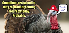 Happy Thanksgiving to my peeps in the North!