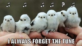 ♫          ♫           ♫    ♫      ?     ♫  I ALWAYS FORGET THE TUNE