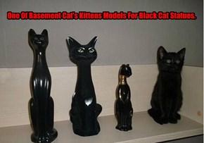 One Of Basement Cat's Kittens Models For Black Cat Statues.