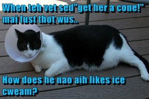 "When teh vet sed""get her a cone!"" mai fust thot wus..  How does he nao aih likes ice cweam?"
