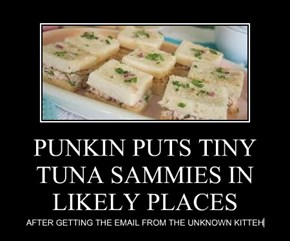 PUNKIN PUTS TINY TUNA SAMMIES IN LIKELY PLACES