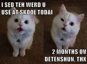 I SED TEH WERD U                                     USE AT SKOOL TODAI   2 MONTHS OV                                        DETENSHUN, THX