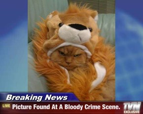 Breaking News - Picture Found At A Bloody Crime Scene.