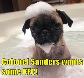 Colonel Sanders wants some KFC!