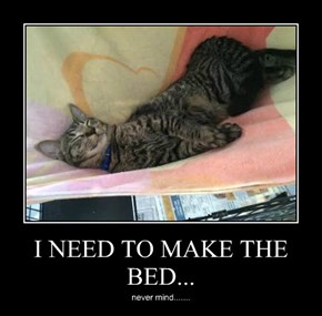 I NEED TO MAKE THE BED...