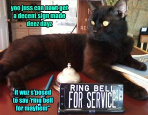 I Offer teh Compleet Oppozit of Service