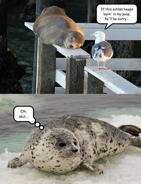 And This Is How the Spotted Seal Got His Spots