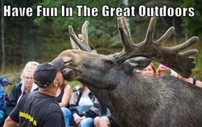 Have Fun In The Great Outdoors