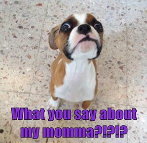 What you say about my momma?!?!?