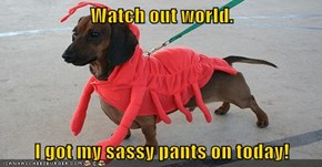 Watch out world.  I got my sassy pants on today!
