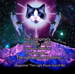 The conspiracy    of silence ought   to revolutionize   my thought,,,          The light pours out of me....